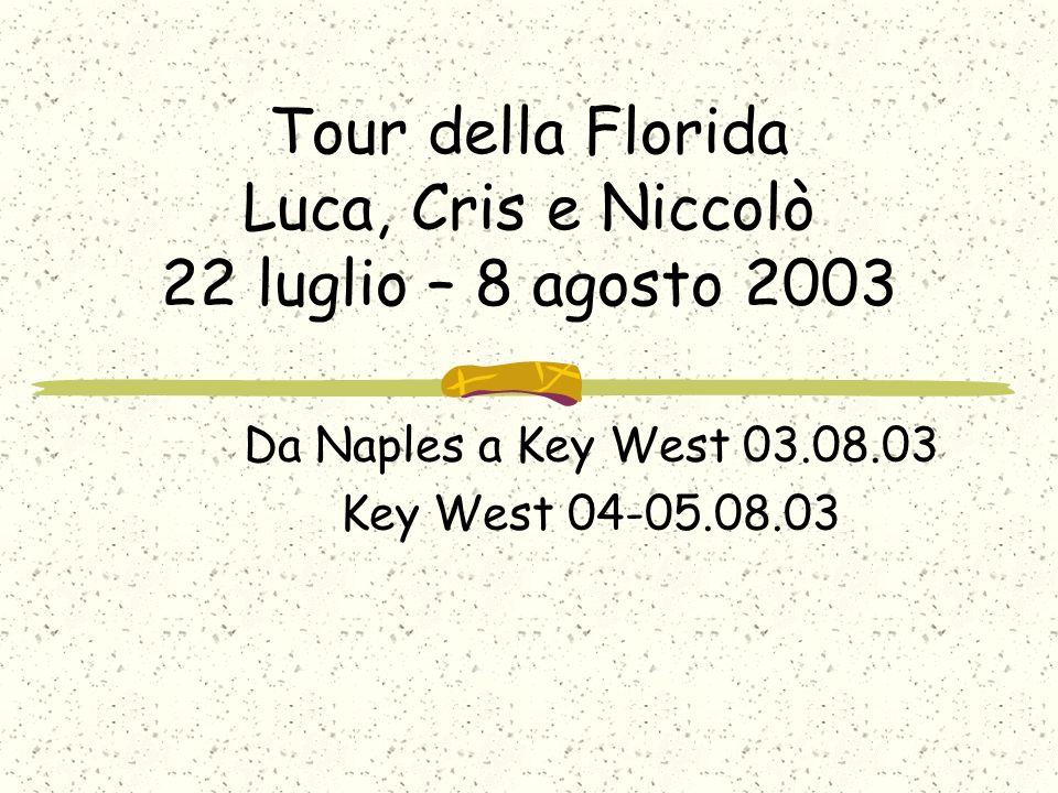 Tour della Florida Luca, Cris e Niccolò 22 luglio – 8 agosto 2003 Da Naples a Key West 03.08.03 Key West 04-05.08.03