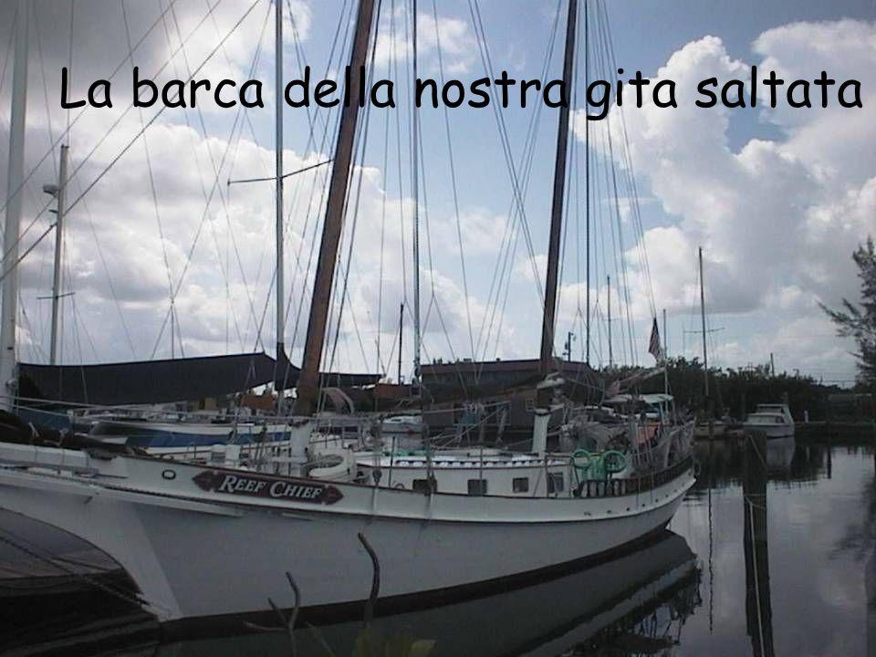 La barca della nostra gita saltata