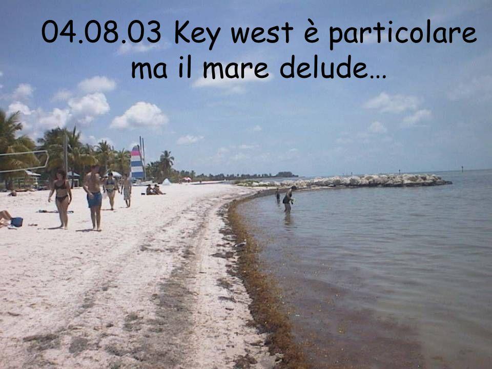 04.08.03 Key west è particolare ma il mare delude…