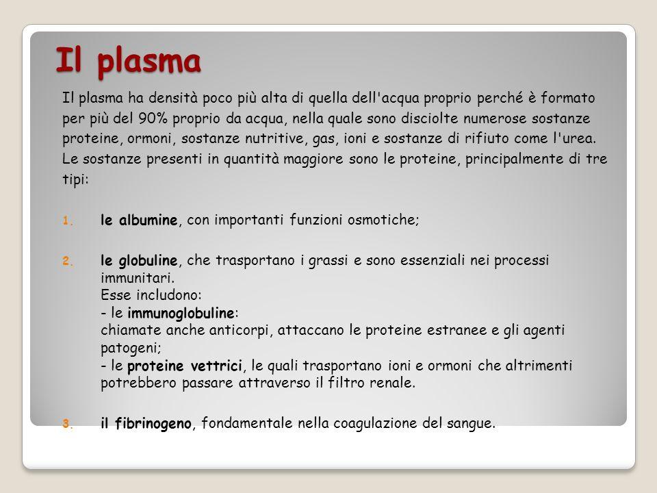 Il plasma Il plasma ha densità poco più alta di quella dell'acqua proprio perché è formato per più del 90% proprio da acqua, nella quale sono disciolt