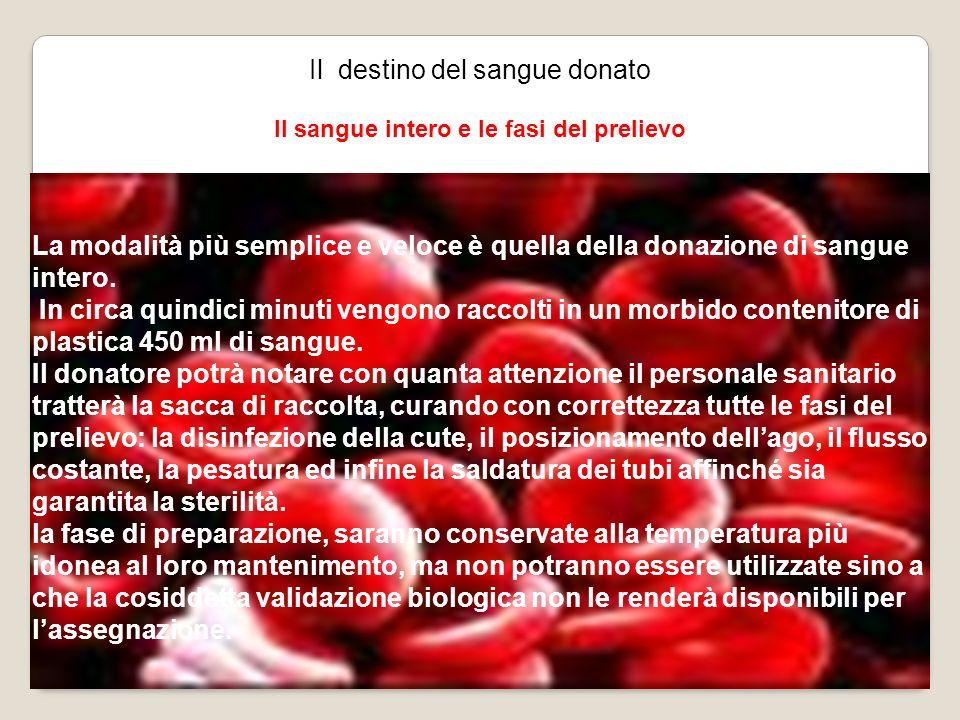 Il destino del sangue donato Il sangue intero e le fasi del prelievo La modalità più semplice e veloce è quella della donazione di sangue intero. In c