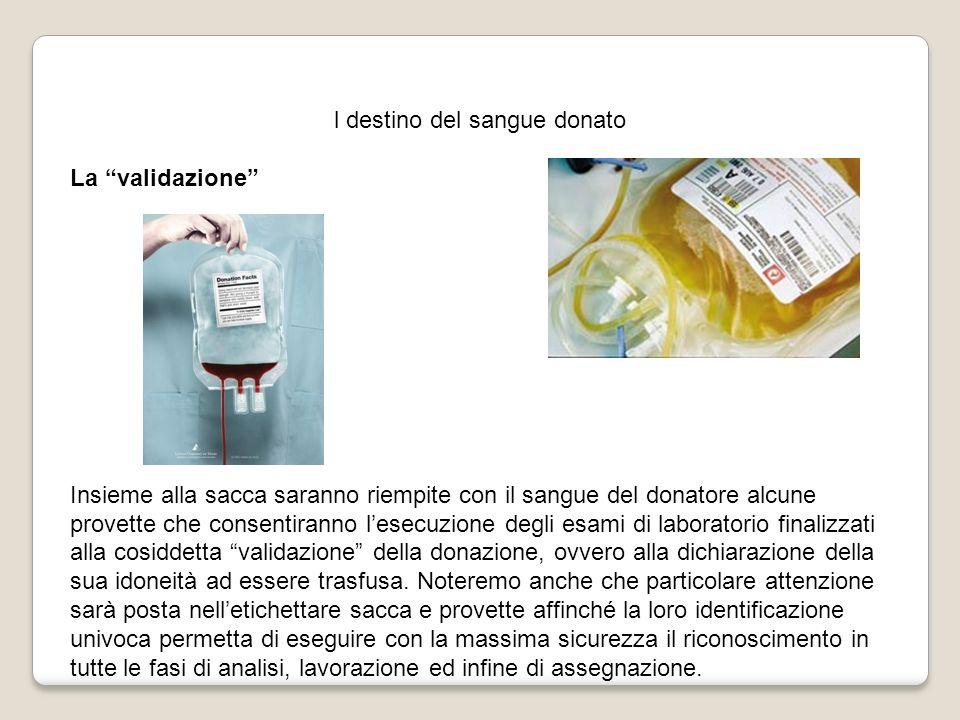 l destino del sangue donato La validazione Insieme alla sacca saranno riempite con il sangue del donatore alcune provette che consentiranno lesecuzion