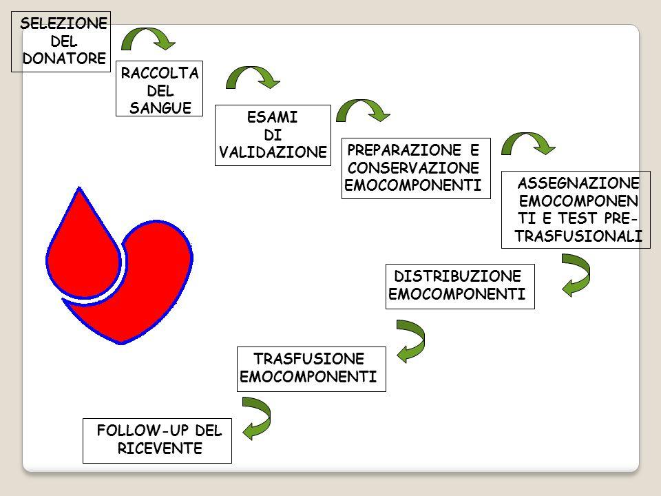 SELEZIONE DEL DONATORE RACCOLTA DEL SANGUE ESAMI DI VALIDAZIONE PREPARAZIONE E CONSERVAZIONE EMOCOMPONENTI ASSEGNAZIONE EMOCOMPONEN TI E TEST PRE- TRA