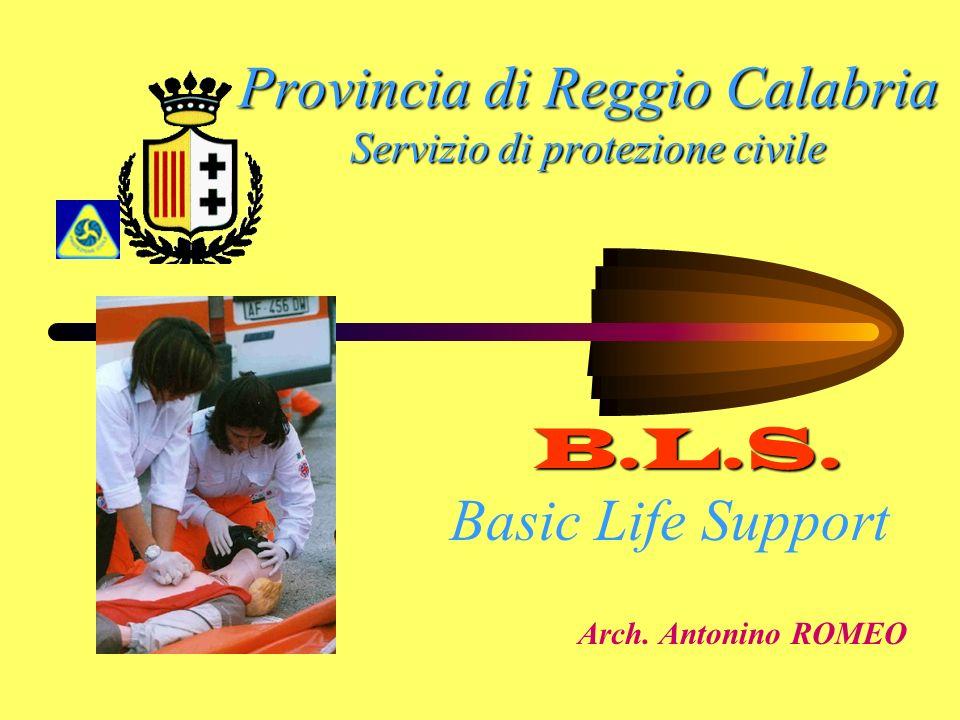 Provincia di Reggio Calabria Servizio di protezione civile Arch. Antonino ROMEO B.L.S. Basic Life Support