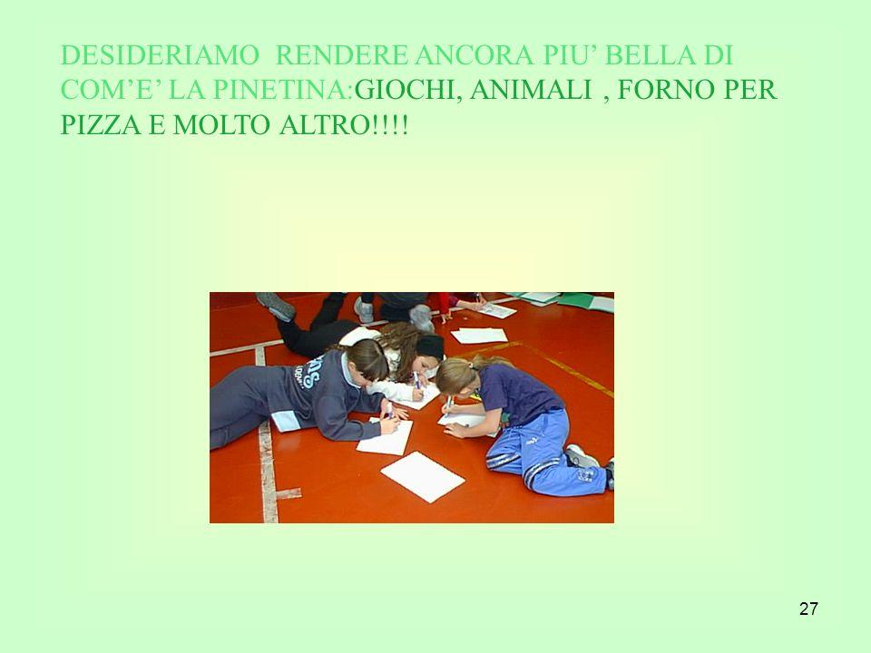 27 DESIDERIAMO RENDERE ANCORA PIU BELLA DI COME LA PINETINA:GIOCHI, ANIMALI, FORNO PER PIZZA E MOLTO ALTRO!!!!