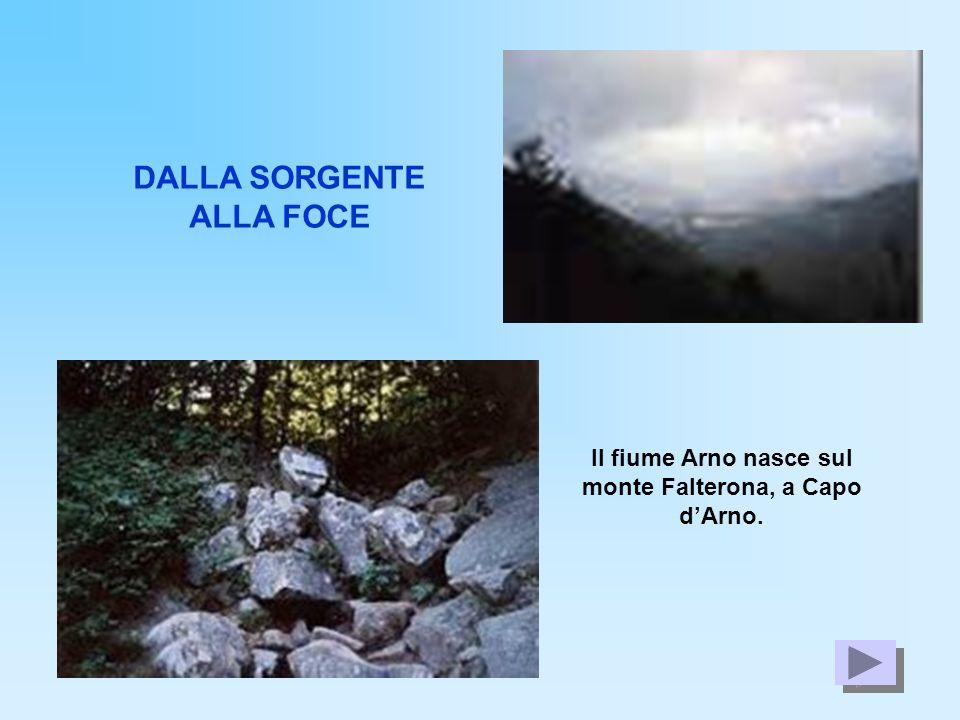 DALLA SORGENTE ALLA FOCE Il fiume Arno nasce sul monte Falterona, a Capo dArno.