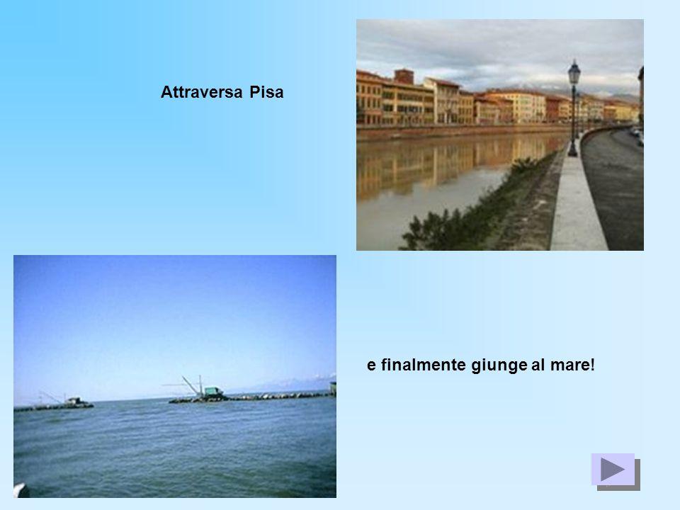 Attraversa Pisa e finalmente giunge al mare!