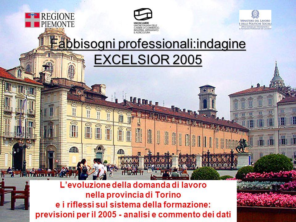 Fabbisogni professionali:indagine EXCELSIOR 2005 Levoluzione della domanda di lavoro nella provincia di Torino e i riflessi sul sistema della formazione: previsioni per il 2005 - analisi e commento dei dati