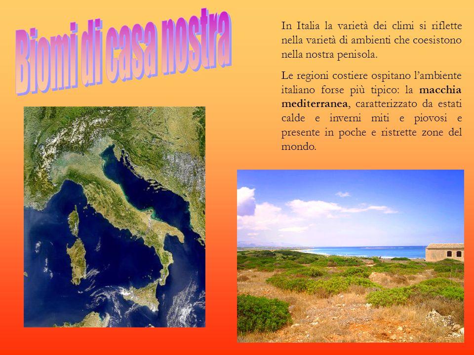 In Italia la varietà dei climi si riflette nella varietà di ambienti che coesistono nella nostra penisola.