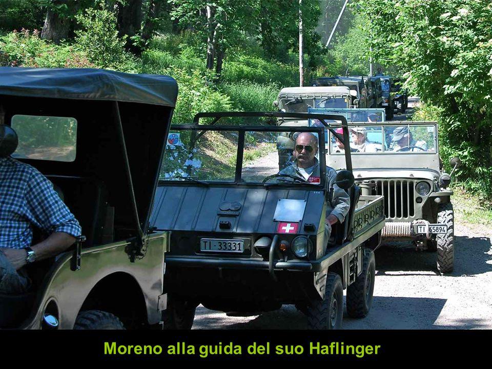 Moreno alla guida del suo Haflinger