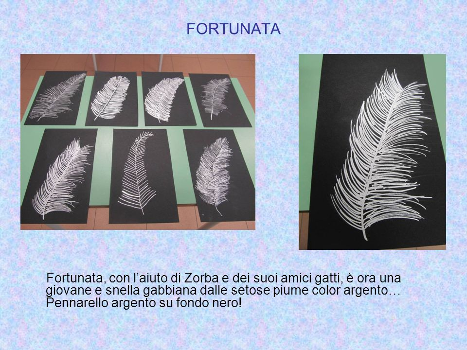 FORTUNATA Fortunata, con laiuto di Zorba e dei suoi amici gatti, è ora una giovane e snella gabbiana dalle setose piume color argento… Pennarello arge