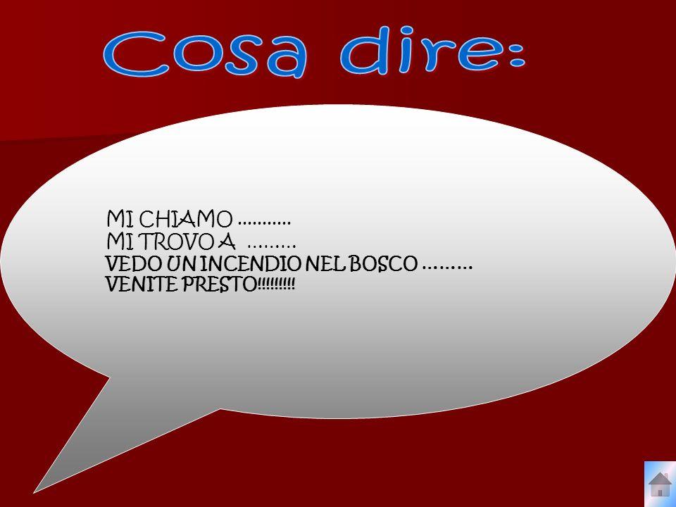 MI CHIAMO........... MI TROVO A ……… VEDO UN INCENDIO NEL BOSCO ……… VENITE PRESTO!!!!!!!!!