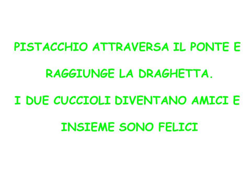 PISTACCHIO ATTRAVERSA IL PONTE E RAGGIUNGE LA DRAGHETTA.