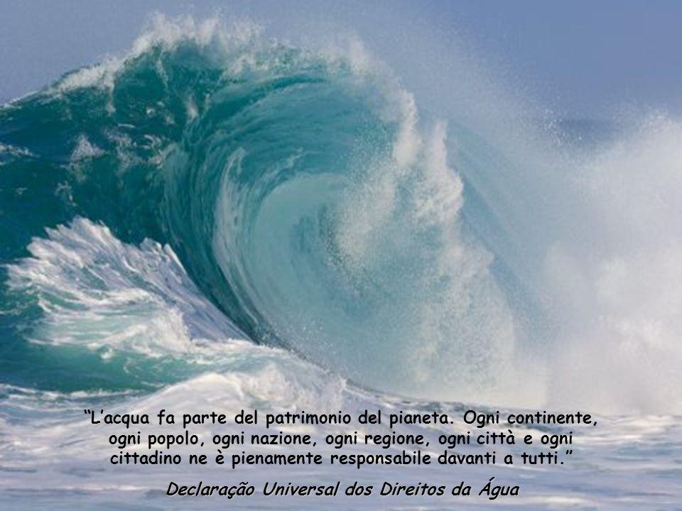 Lacqua non è necessaria solo alla vita ma ci riempie di un sentimento di gratificazione che eccede il piacere dei sensi. A. de Saint Exupériy