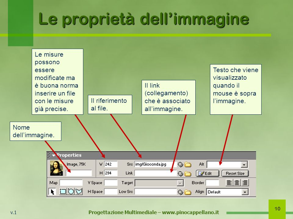 v.1 Progettazione Multimediale – www.pinocappellano.it 10 Le proprietà dellimmagine Nome dellimmagine. Le misure possono essere modificate ma è buona