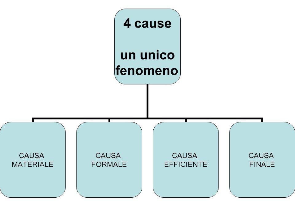 4 cause un unico fenomeno CAUSA MATERIALE CAUSA FORMALE CAUSA EFFICIENTE CAUSA FINALE