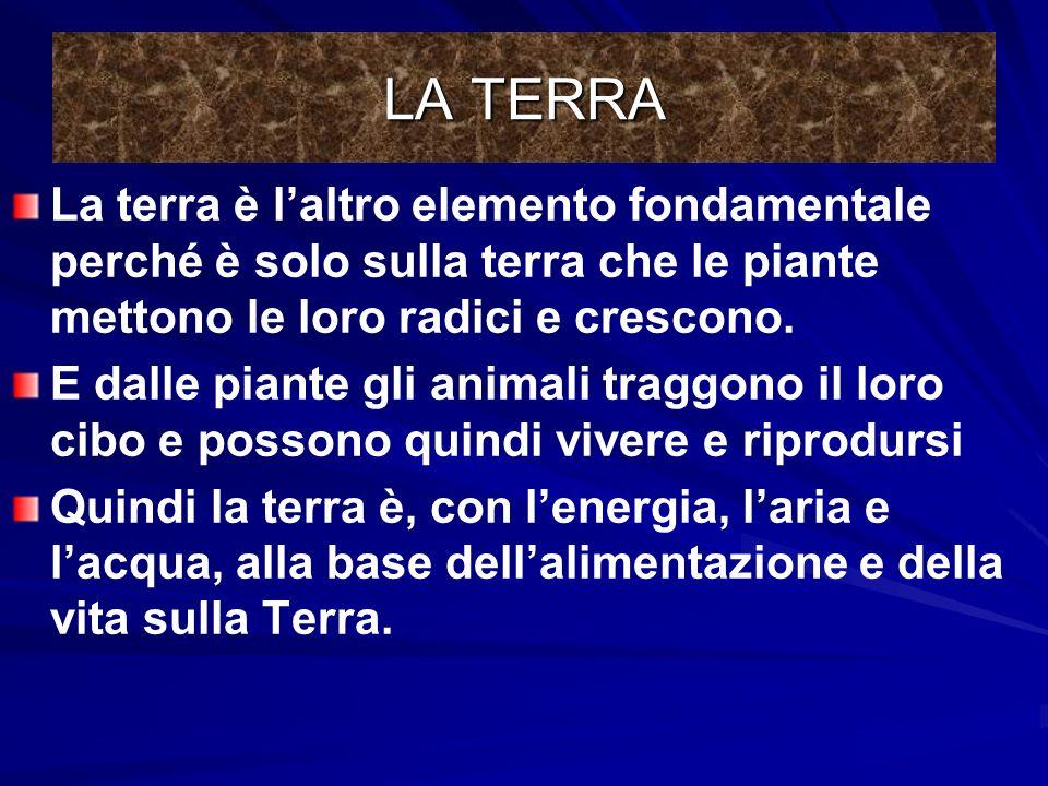 LA TERRA INFINE, LA TERRA La terra è un composto molto vario. ci sono rocce, metalli, cristalli, sali, composti chimici complessi, uninfinità di batte