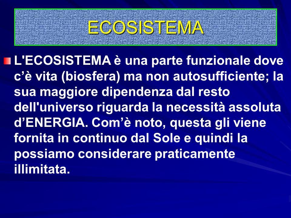 Questa trova le condizioni adeguate per la propria sussistenza e per il proprio sviluppo nell'ambiente fisico dello stagno i cui elementi principali s