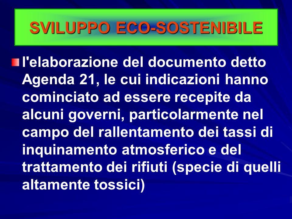 Alcune prime azioni di carattere politico sono scaturite dalla Conferenza delle Nazioni Unite sull'ambiente e lo sviluppo (UNCED, Rio de Janeiro, 1992