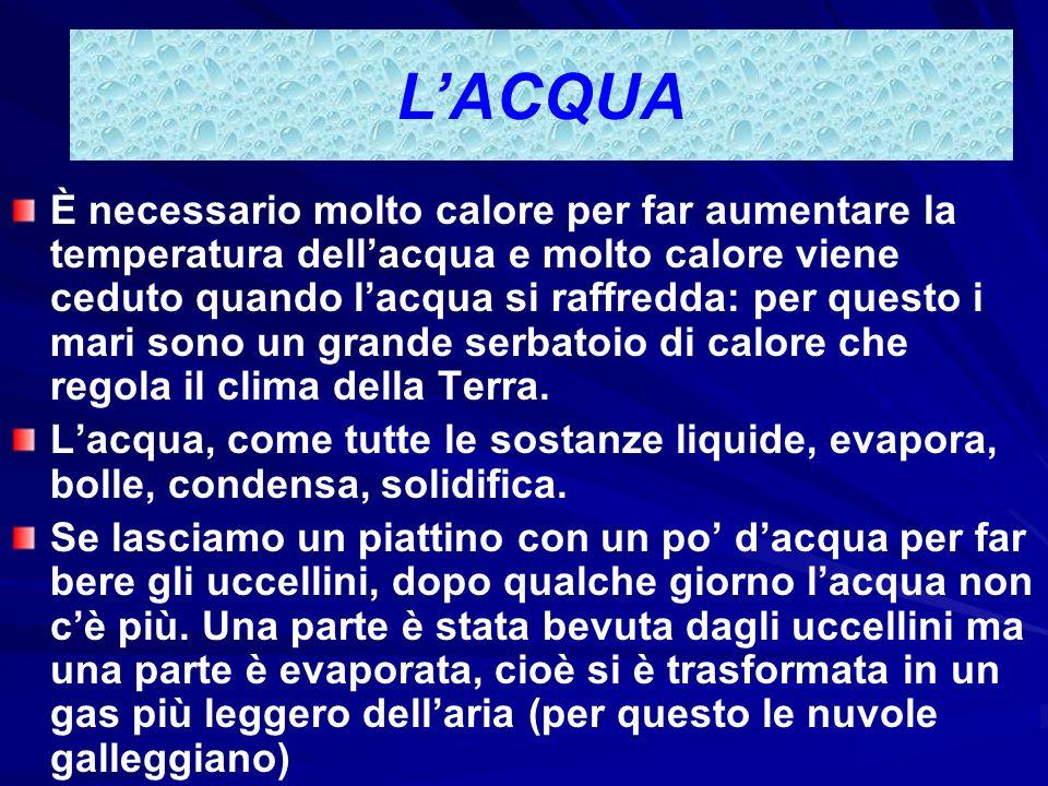LACQUA Lacqua ha moltissime qualità: Al mare lacqua è SALATA, infatti lacqua ha la capacità di sciogliere molti composti (sali). Il sale che usiamo pe
