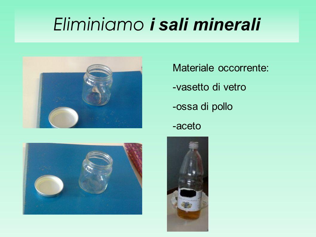 Eliminiamo i sali minerali Materiale occorrente: -vasetto di vetro -ossa di pollo -aceto