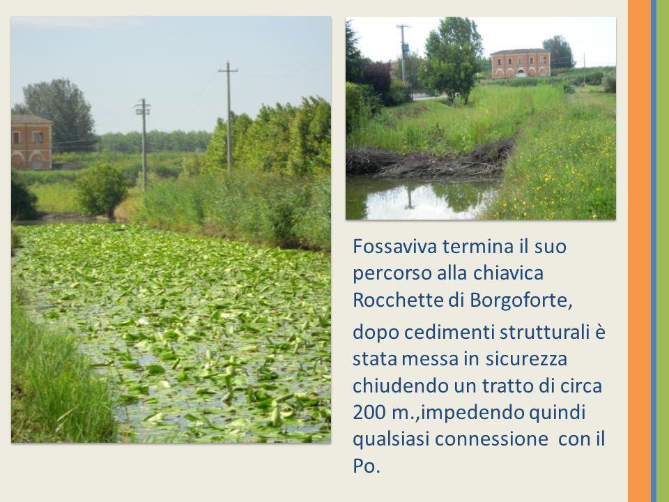 Fossaviva termina il suo percorso alla chiavica Rocchette di Borgoforte, dopo cedimenti strutturali è stata messa in sicurezza chiudendo un tratto di circa 200 m.,impedendo quindi qualsiasi connessione con il Po.