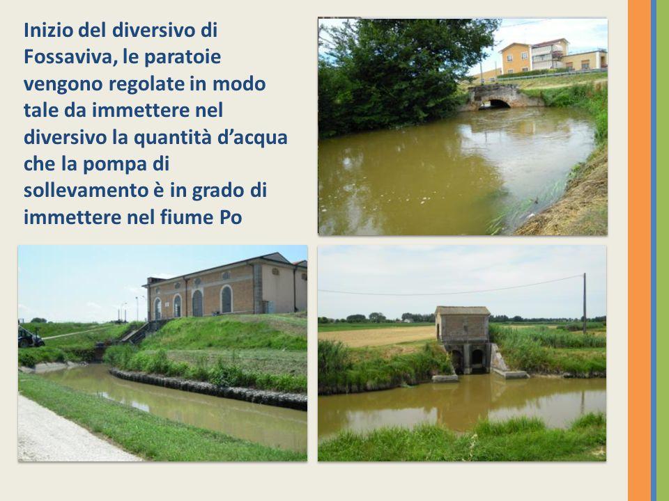 Inizio del diversivo di Fossaviva, le paratoie vengono regolate in modo tale da immettere nel diversivo la quantità dacqua che la pompa di sollevamento è in grado di immettere nel fiume Po Canale Gherardo che si immette in Fossaviva