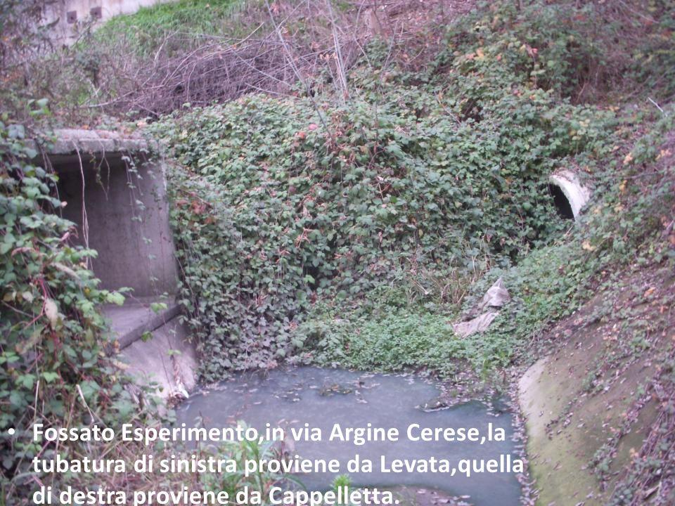 Foto del 20/06/2010, il livello dellacqua piovana rasenta il ciglio del fossato Esperimento, sovrastando le tubature.