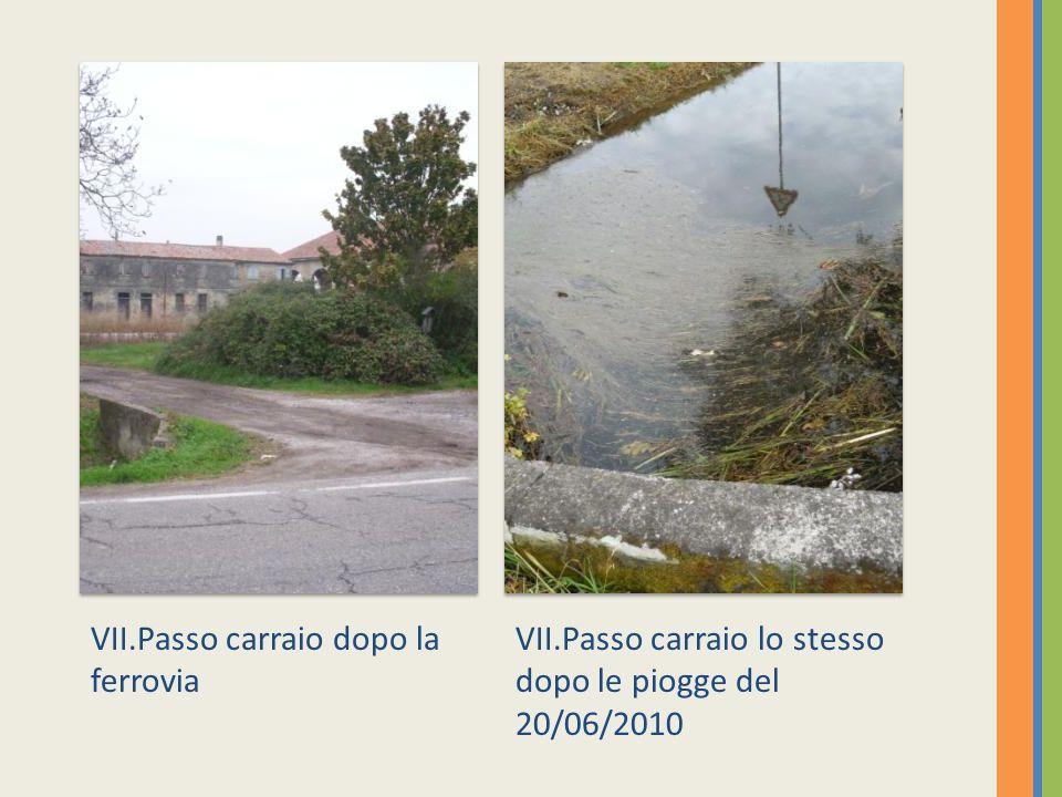 VIII. Passo carraio,strada Tonfiolo VII. Passo carraio, lacqua invade i campi circostanti.