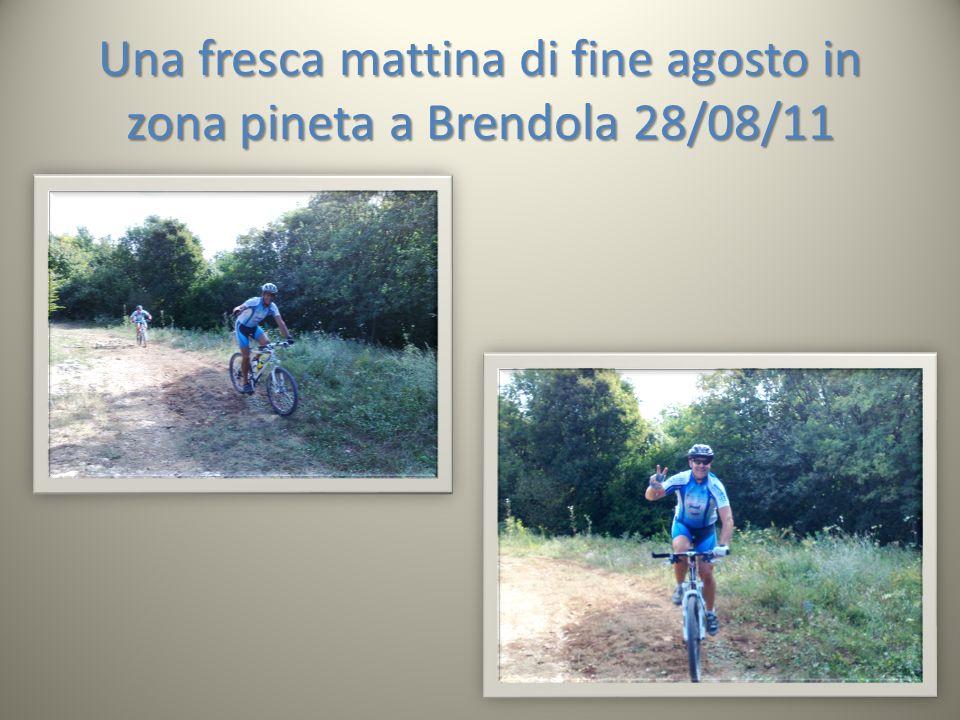 Una fresca mattina di fine agosto in zona pineta a Brendola 28/08/11
