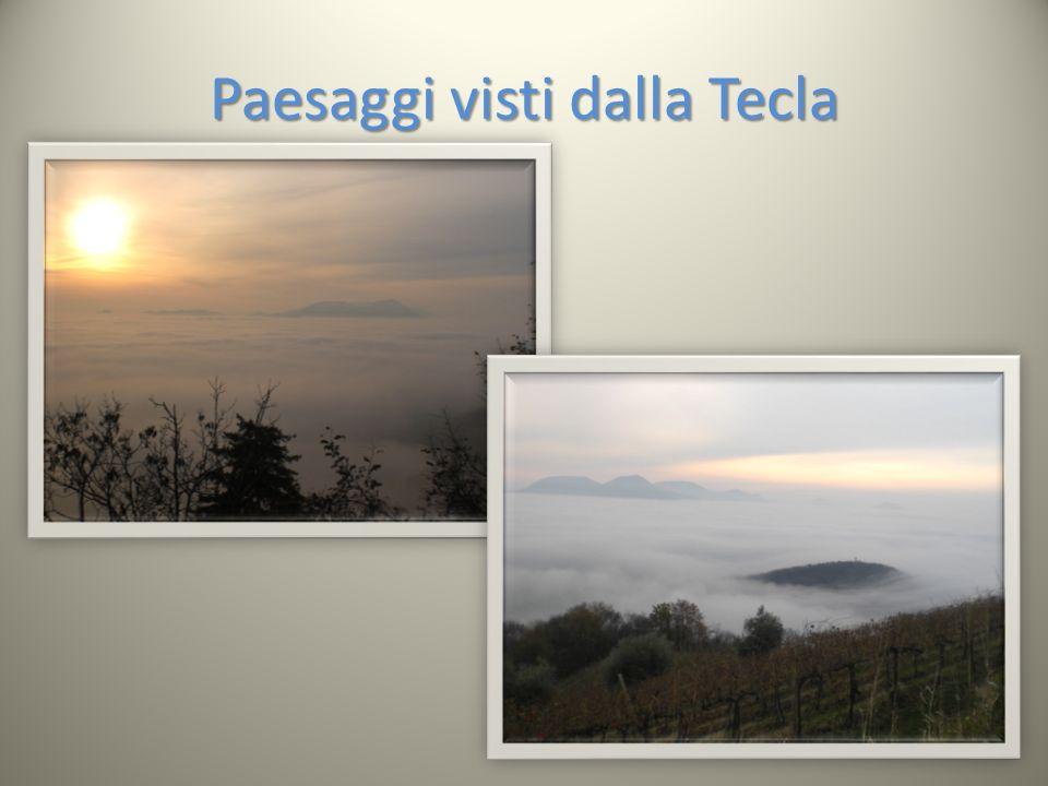 Paesaggi visti dalla Tecla