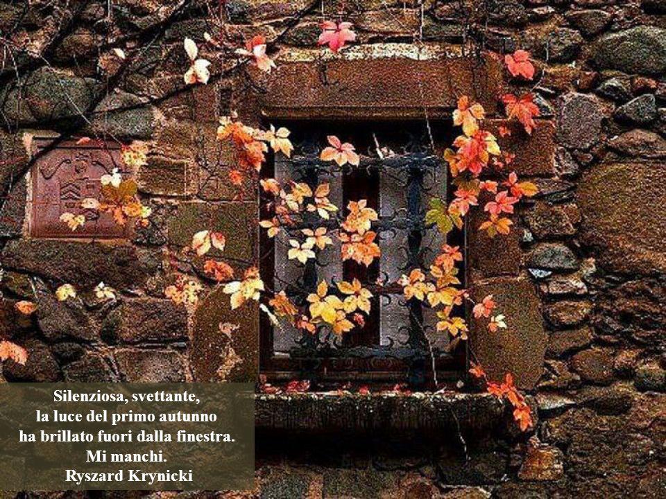 Silenziosa, svettante, la luce del primo autunno ha brillato fuori dalla finestra.