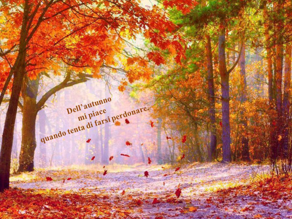 Silenziosa, svettante, la luce del primo autunno ha brillato fuori dalla finestra. Mi manchi. Ryszard Krynicki