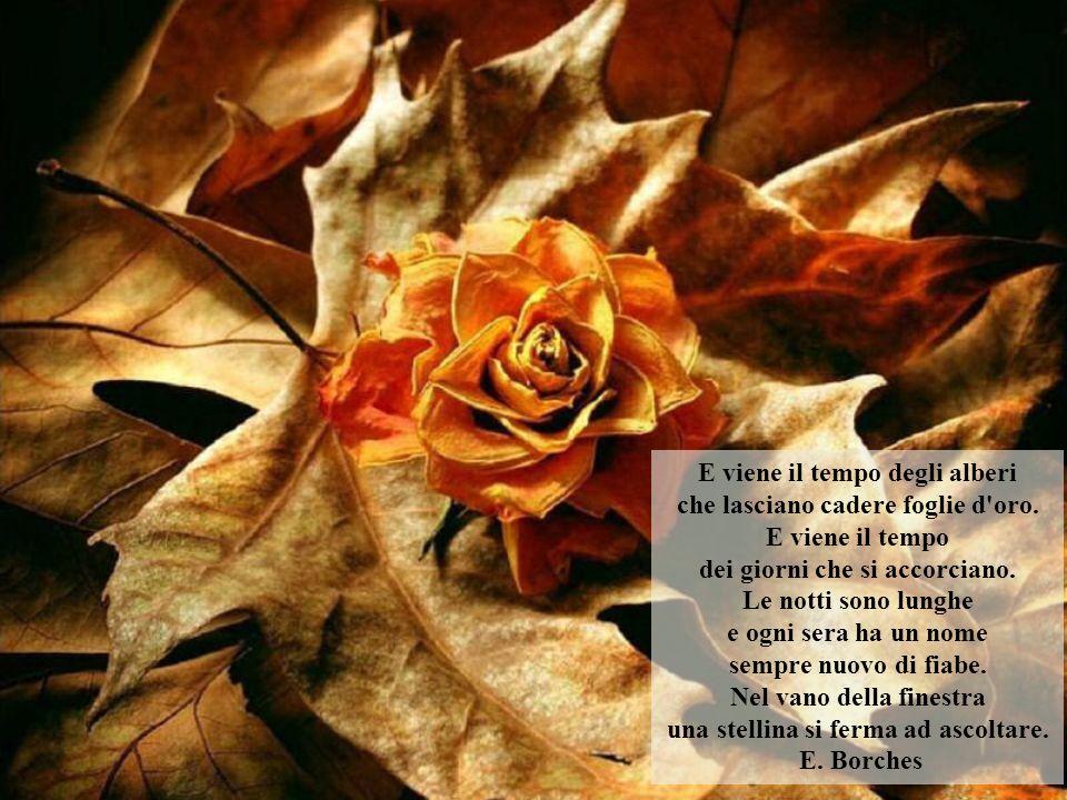E viene il tempo degli alberi che lasciano cadere foglie d oro.