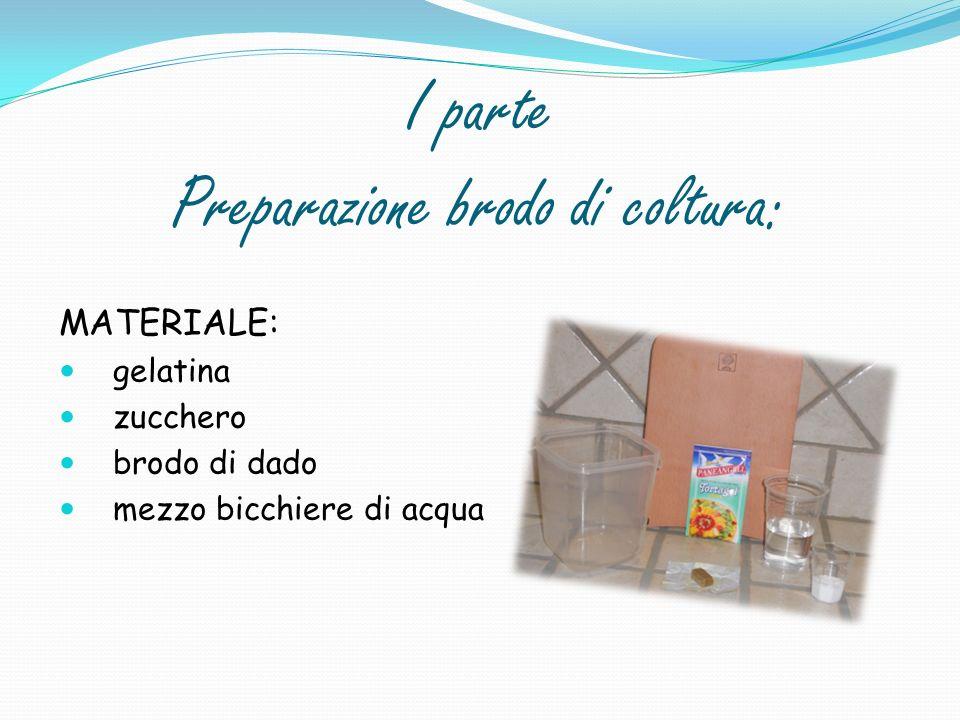 I parte Preparazione brodo di coltura: MATERIALE: gelatina zucchero brodo di dado mezzo bicchiere di acqua