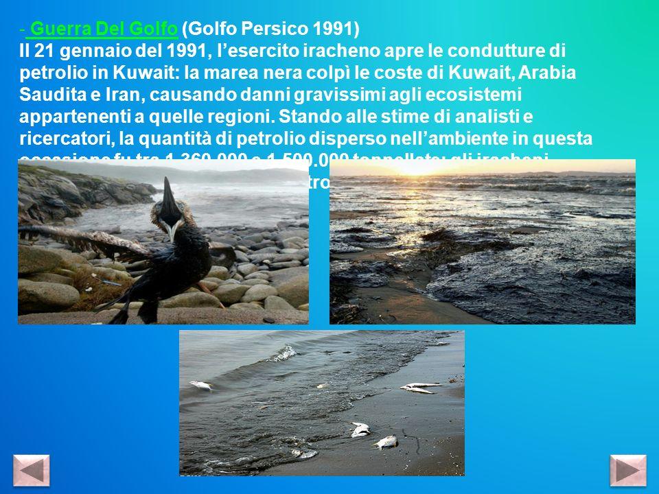 - Guerra Del Golfo (Golfo Persico 1991) Il 21 gennaio del 1991, lesercito iracheno apre le condutture di petrolio in Kuwait: la marea nera colpì le co