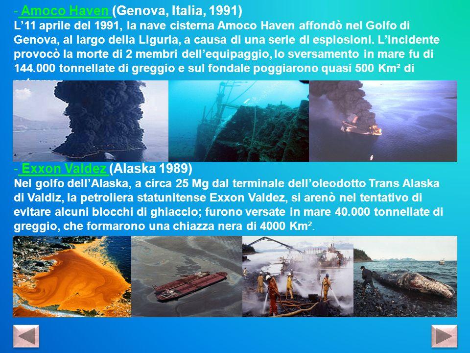 - Amoco Haven (Genova, Italia, 1991) L11 aprile del 1991, la nave cisterna Amoco Haven affondò nel Golfo di Genova, al largo della Liguria, a causa di