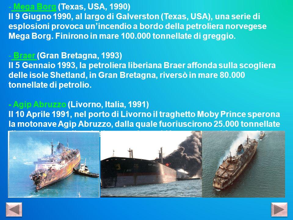 - Mega Borg (Texas, USA, 1990) Il 9 Giugno 1990, al largo di Galverston (Texas, USA), una serie di esplosioni provoca unincendio a bordo della petroli