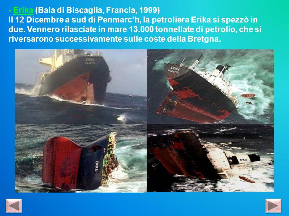 - Erika (Baia di Biscaglia, Francia, 1999) Il 12 Dicembre a sud di Penmarch, la petroliera Erika si spezzò in due. Vennero rilasciate in mare 13.000 t
