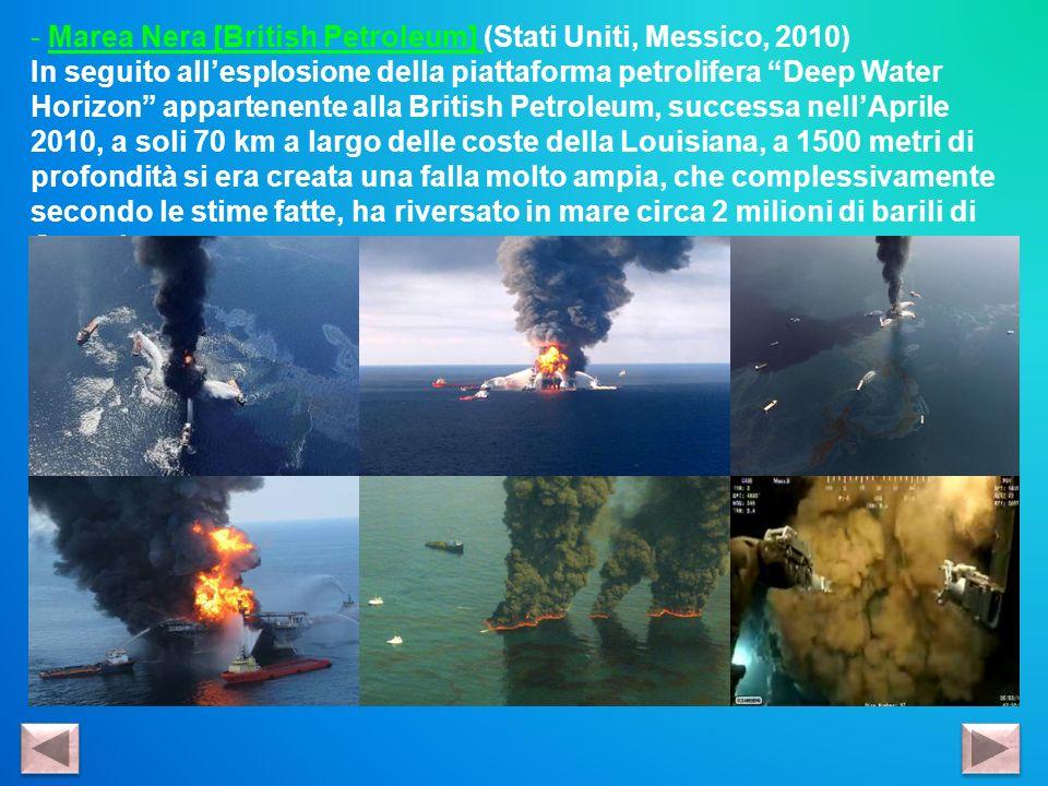 - Marea Nera [British Petroleum] (Stati Uniti, Messico, 2010) In seguito allesplosione della piattaforma petrolifera Deep Water Horizon appartenente a