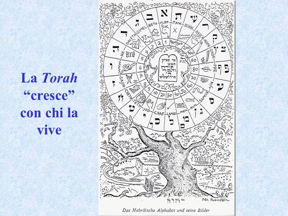 La Torah cresce con chi la vive