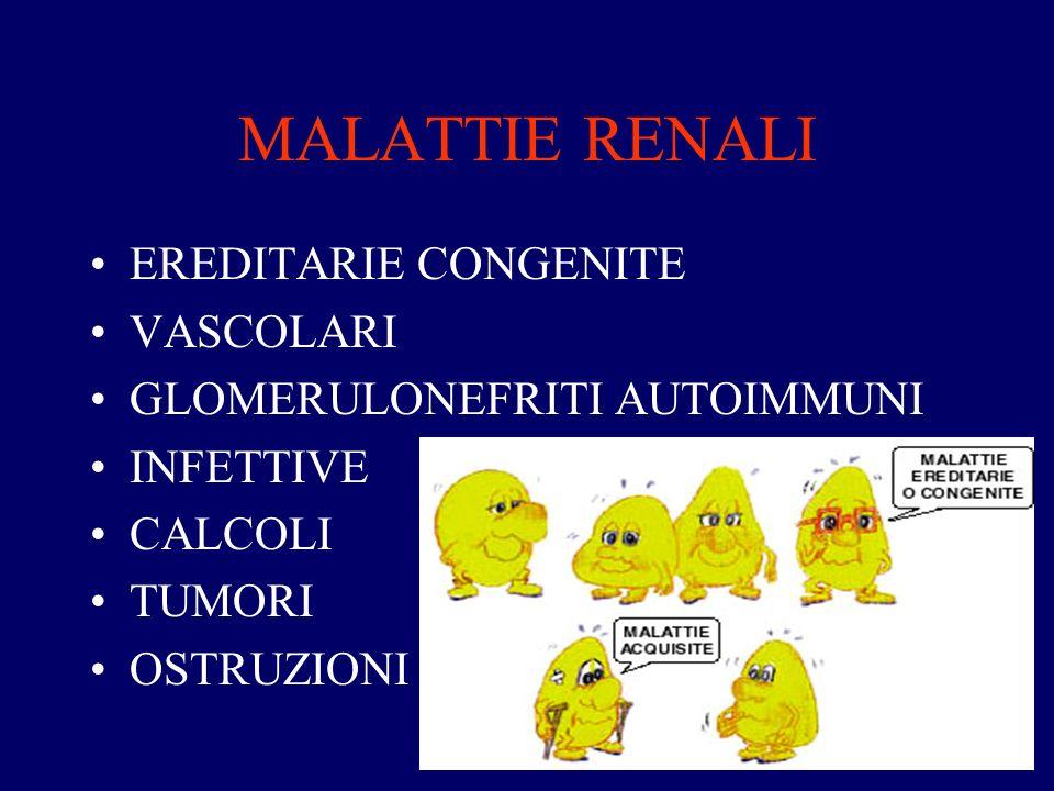 MALATTIE RENALI EREDITARIE CONGENITE VASCOLARI GLOMERULONEFRITI AUTOIMMUNI INFETTIVE CALCOLI TUMORI OSTRUZIONI