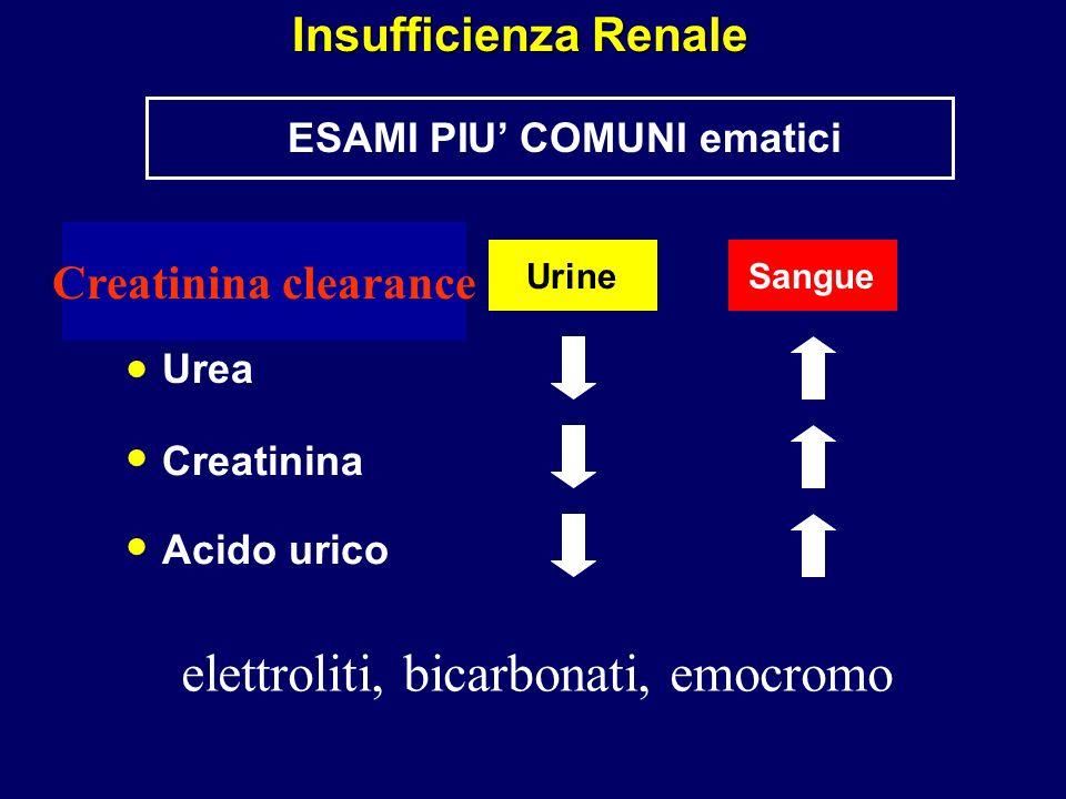 Creatinina clearance ESAMI PIU COMUNI ematici Insufficienza Renale Urea Creatinina Acido urico UrineSangue elettroliti, bicarbonati, emocromo