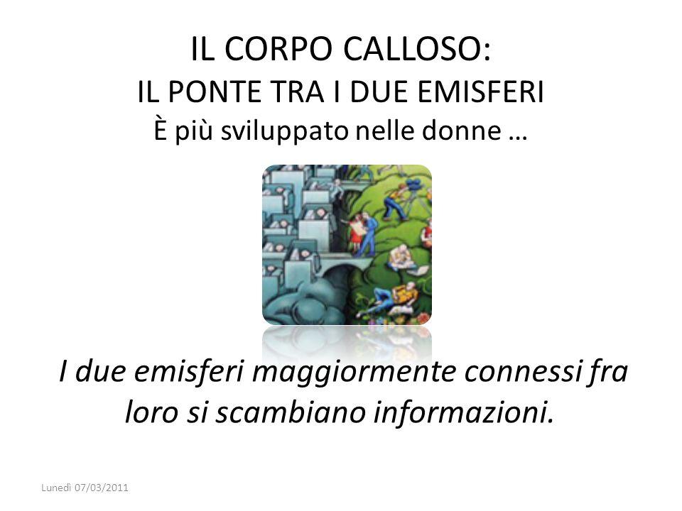 I due emisferi maggiormente connessi fra loro si scambiano informazioni. Lunedì 07/03/2011 IL CORPO CALLOSO: IL PONTE TRA I DUE EMISFERI È più svilupp