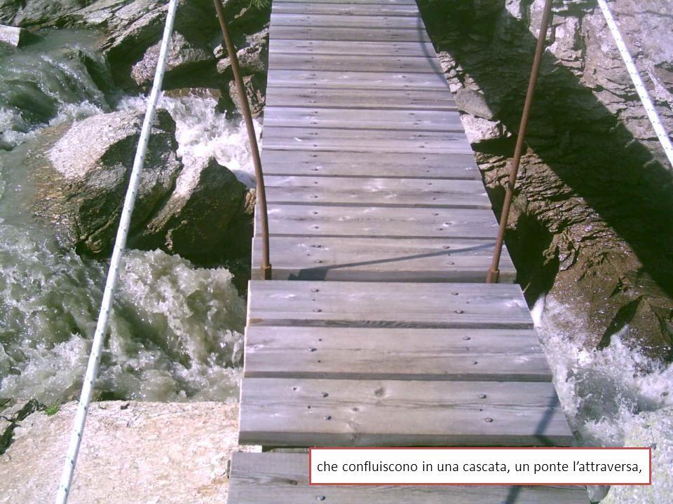 che confluiscono in una cascata, un ponte lattraversa,