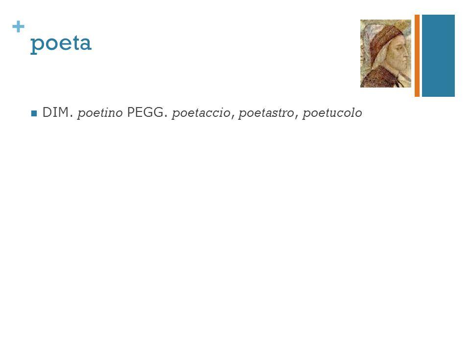 + poeta DIM. poetino PEGG. poetaccio, poetastro, poetucolo