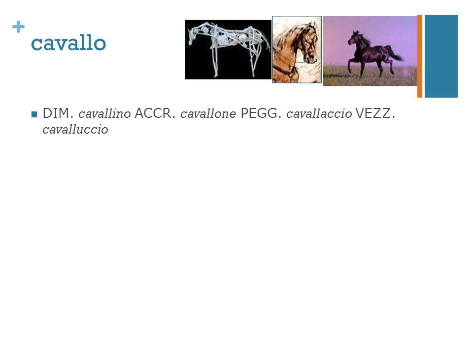 + cavallo DIM. cavallino ACCR. cavallone PEGG. cavallaccio VEZZ. cavalluccio