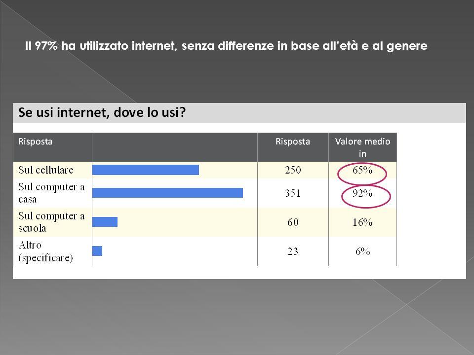 Il 97% ha utilizzato internet, senza differenze in base alletà e al genere