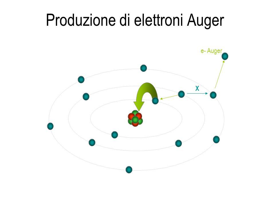 Produzione di elettroni Auger X e- Auger
