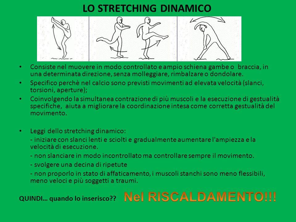 LO STRETCHING DINAMICO Consiste nel muovere in modo controllato e ampio schiena gambe o braccia, in una determinata direzione, senza molleggiare, rimb